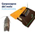 Isatrap Carpo (Cydia pomonella)