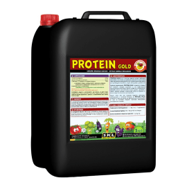 Protein Gold - Foto