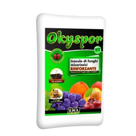 Foto Okyspor TT